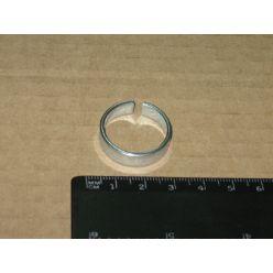 Кольцо шпильки колеса BPW (пр-во FEBI)