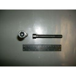 Болт головки блока цилиндров Д-406  TORX  (покупн. ЗМЗ)